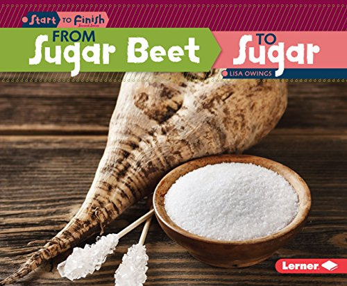 9781467760201: From Sugar Beet to Sugar (Start to Finish)