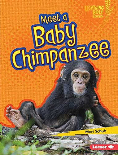 Meet a Baby Chimpanzee (Lightning Bolt Books - Baby African Animals): Mari Schuh
