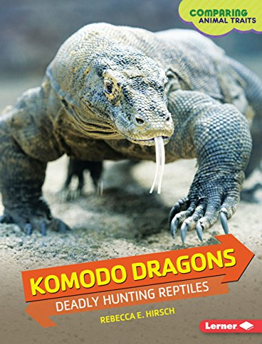 Komodo Dragons: Deadly Hunting Reptiles (Library Binding): Rebecca E. Hirsch