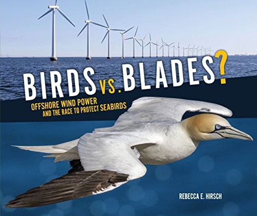 Birds vs. Blades: Offshore Wind Power and the Race to Save Seabirds: Hirsch, Rebecca E.