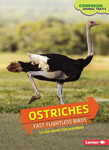 9781467796330: Ostriches: Fast Flightless Birds (Comparing Animal Traits)