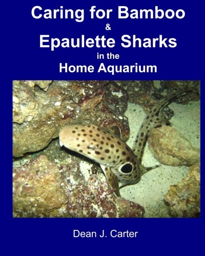 Caring for Bamboo and Epaulette Sharks in the Home Aquarium: Carter, Dean J