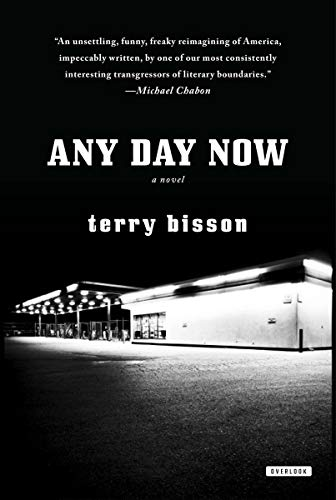 9781468303346: Any Day Now: A Novel