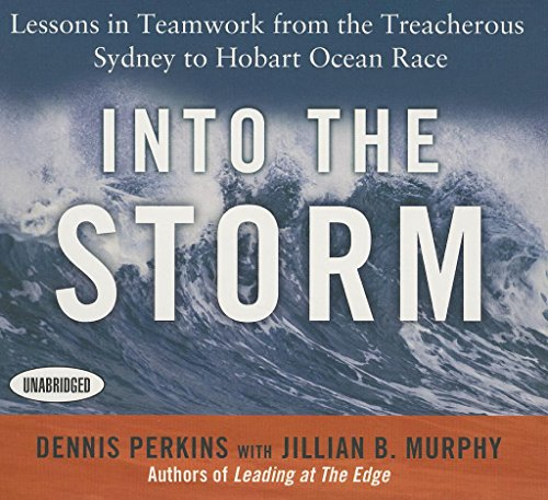 Into the Storm Format: CD-Audio: Perkins, Dennis N.T.