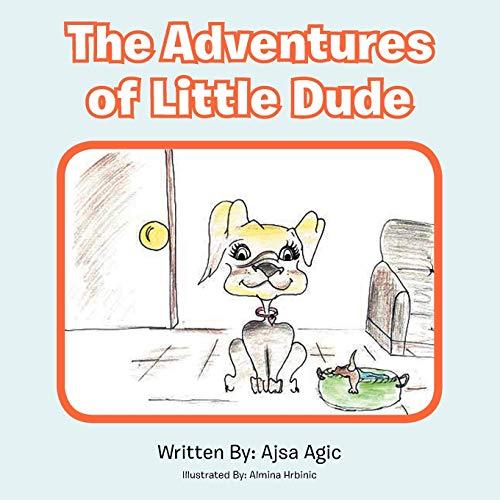 9781469191997: The Adventures of Little Dude