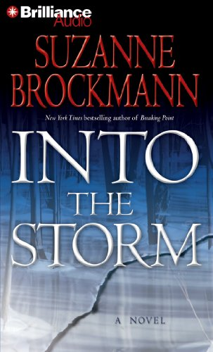 9781469233529: Into the Storm: A Novel (Troubleshooters Series)