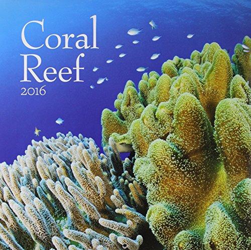 9781469332918: Coral Reef 2016 Calendar