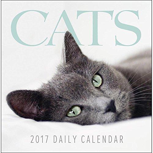 9781469336138: Cats 2017 Calendar