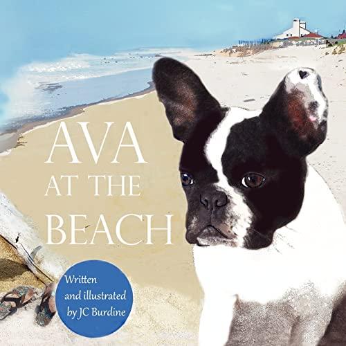 9781469995366: Ava at the Beach