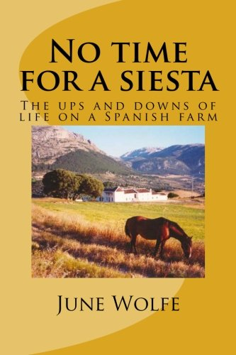 story of siesta Spanish workers put in more hours than any in europe despite their work-shy stereotype, but there are some who fear it could be a mistake to abandon the siesta completely.