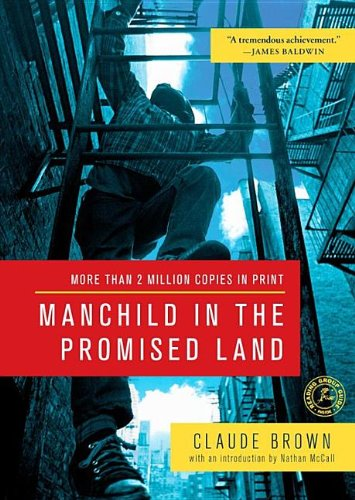9781470897222: Manchild in the Promised Land