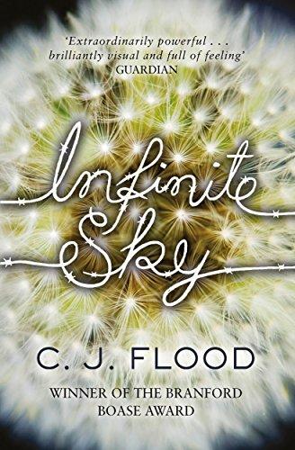 9781471123498: Infinite Sky