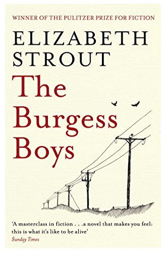 9781471127380: The Burgess Boys