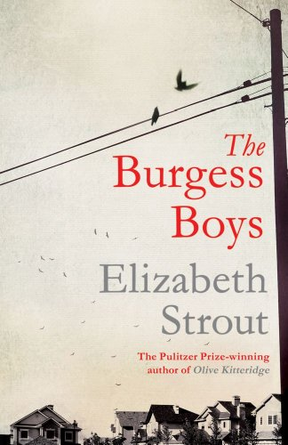 9781471127526: The Burgess Boys