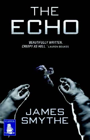 9781471256837: The Echo (Large Print Edition)