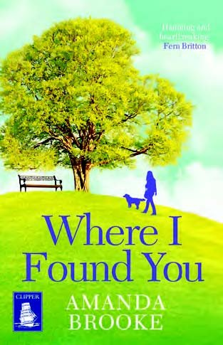 9781471272271: Where I Found You (Large Print Edition)