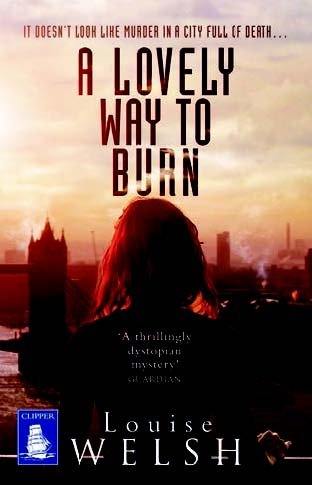 9781471281785: A Lovely Way to Burn (Large Print Edition)