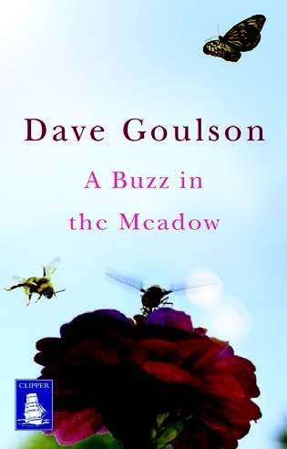 9781471285530: A Buzz in the Meadow (Large Print Edition)