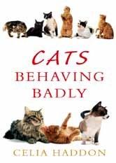 9781471323256: Cats Behaving Badly