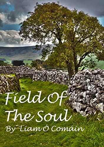 Field Of The Soul: O' Comáin, Liam