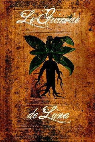 9781471691188: Le grimoire de Luna (French Edition)