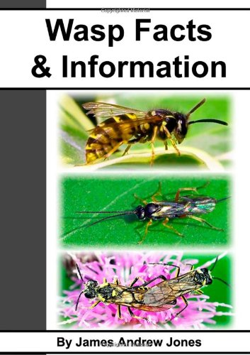 9781471717208: Wasp Facts & Information