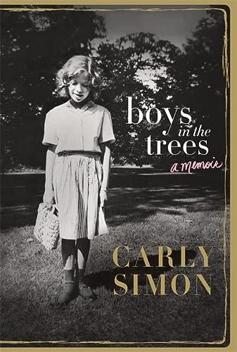 9781472124036: Boys in the Trees: A Memoir