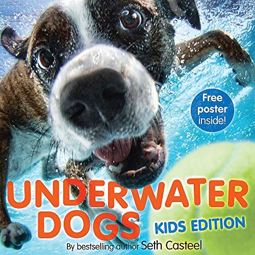 9781472211484: Underwater Dogs
