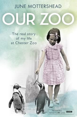 9781472226358: Our Zoo