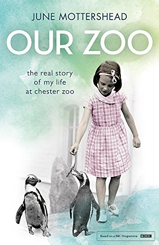 9781472226365: Our Zoo