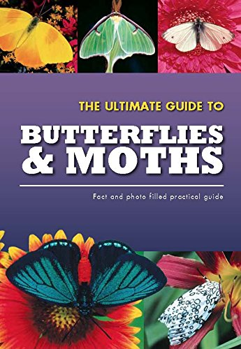 9781472310088: The Ultimate Guide To Butterflies & Moths (Practical Guides)