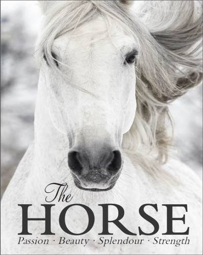 9781472357564: The Horse