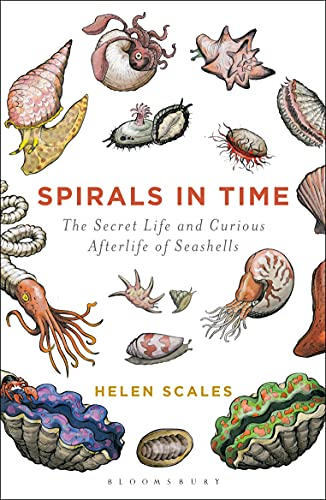 9781472911384: Spirals in Time: The Secret Life and Curious Afterlife of Seashells