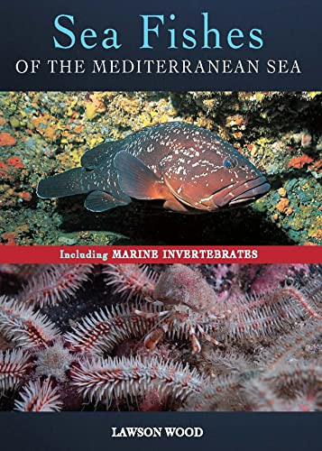 9781472921789: Sea Fishes of the Mediterranean Including Marine Invertebrat