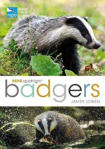 RSPB Spotlight: Badgers (Paperback): James Lowen