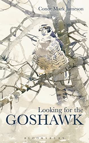 9781472922595: Looking for the Goshawk