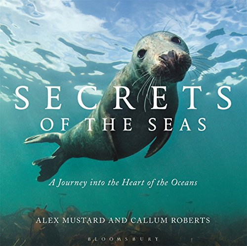 9781472927613: Secrets of the Seas: A journey into the heart of the oceans
