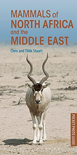 Mammals of North Africa and the Middle East (Paperback): Chris Stuart
