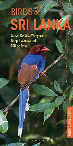 9781472932938: Birds of Sri Lanka (Pocket Photo Guides)