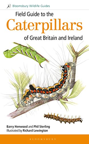 9781472933560: Field Guide to the Caterpillars of Great Britain and Ireland (Field Guides) (Bloomsbury Wildlife Guides)