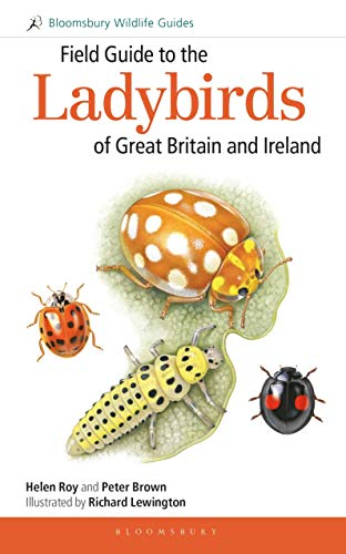 9781472935687: Field Guide to the Ladybirds of Great Britain and Ireland (Field Guides)