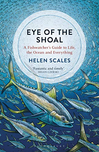 9781472936820: Eye of the Shoal: A Fishwatcher's Guide to Life, the Ocean and Everything