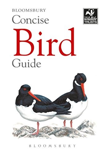 9781472963758: Concise Bird Guide (The Wildlife Trusts)