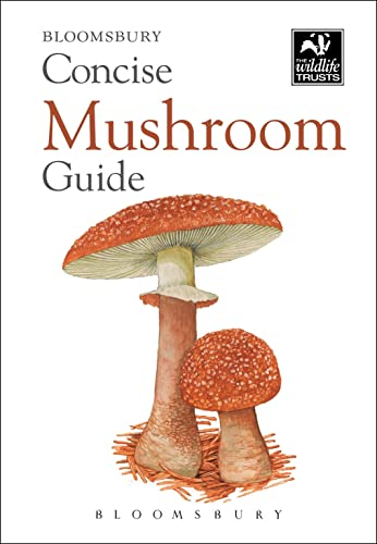 Concise Mushroom Guide (The Wildlife Trusts): Bloomsbury Publishing PLC