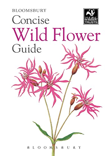 Concise Wild Flower Guide (The Wildlife Trusts): Bloomsbury Publishing PLC