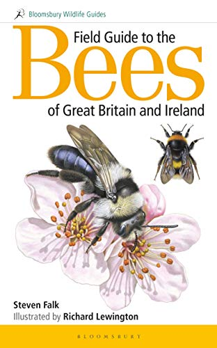 9781472967053: Field Guide to the Bees of Great Britain and Ireland (Field Guides)