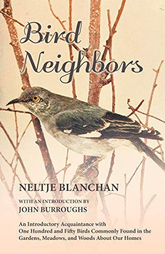 9781473335363: Bird Neighbors - An Introductory Acquaintance with One Hundred and Fifty Birds Commonly Found in the Gardens, Meadows, and Woods About Our Homes