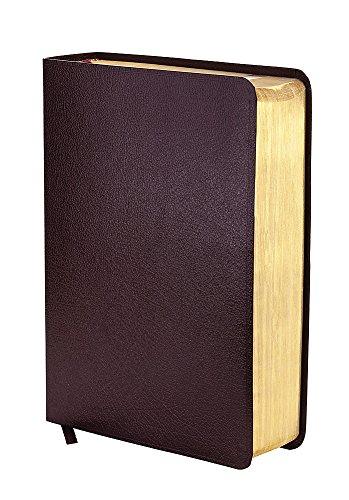 9781473615403: NIV Study Bible