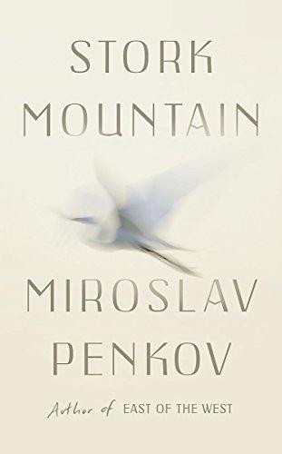 9781473622180: Stork Mountain