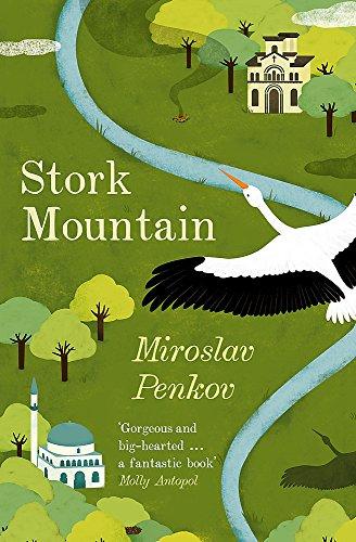 9781473622203: Stork Mountain